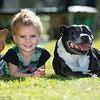 Cette chienne a sauvé la vie de ce petit garçon !